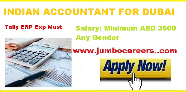 Indian Accountant salary in Dubai.