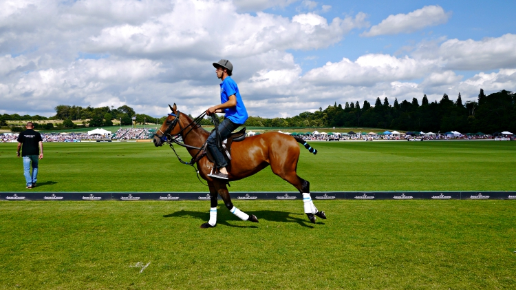 Jaeger-LeCoultre Gold Cup Cowdray