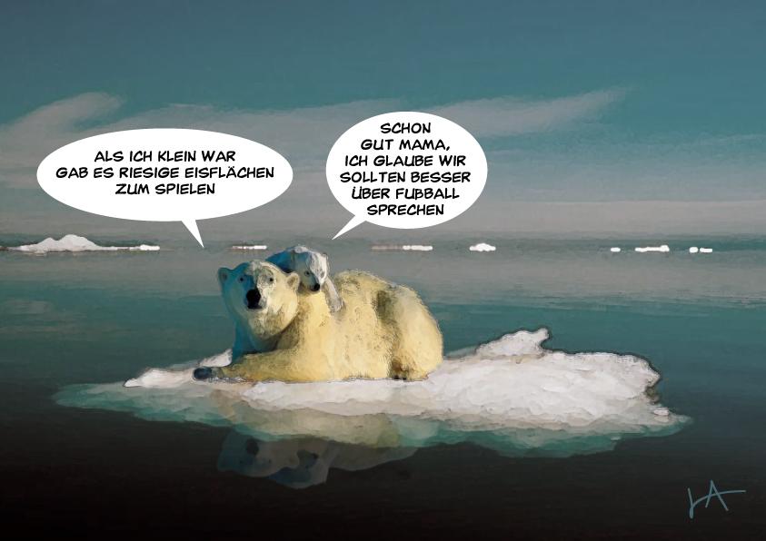 Tagesfisch: Arktisches Eis
