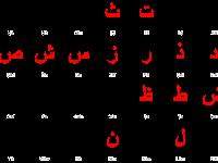Berapa Jumlah Huruf dalam Abjad Arab ?