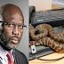 دفتر میں زہریلے سانپ آن دھمکے، افریقی صدر کو حکومت گھر سے چلانا پڑگئی