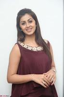 Nikki Galrani in a Brown Shining Sleeveless Gown at Nakshatram music launch ~  Exclusive 095.JPG