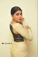 Actress Pooja Roshan Stills in Golden Short Dress at Box Movie Audio Launch  0119.JPG