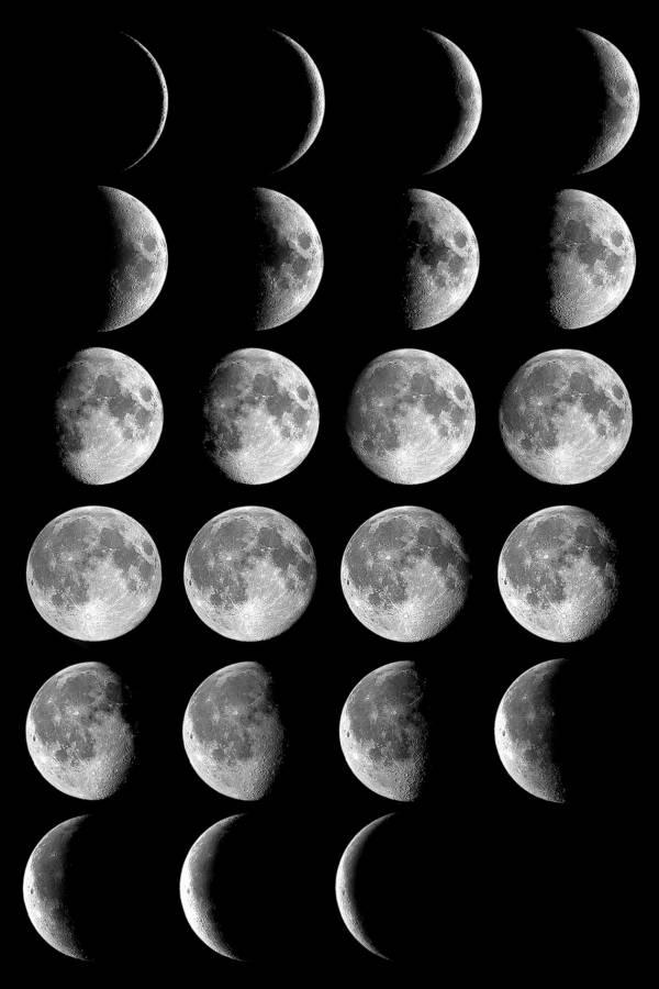Calendario Lunare Per Capelli.Calendario Lunare 2014 Capelli Depilazione E Salute Il