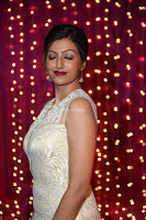 Hamsa Nandini in stunning Sleeveless Designer Gown at Zee Telugu Apsara Awards 2017 01.JPG
