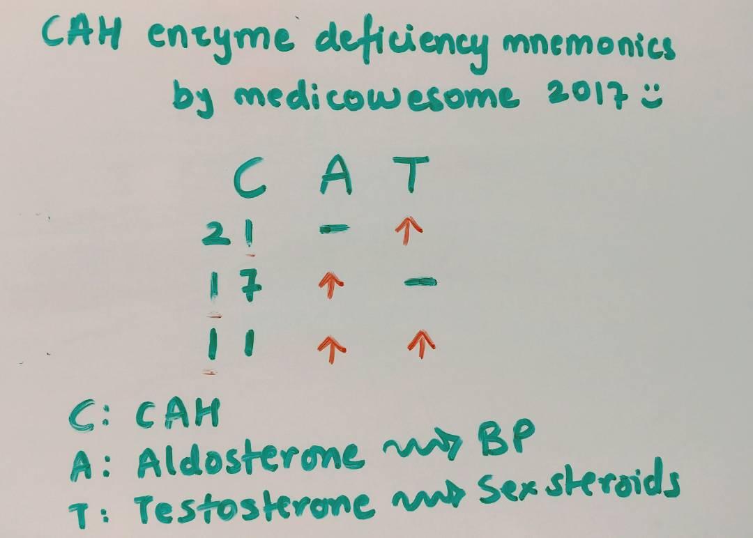 Medicowesome: Congenital adrenal hyperplasia mnemonic