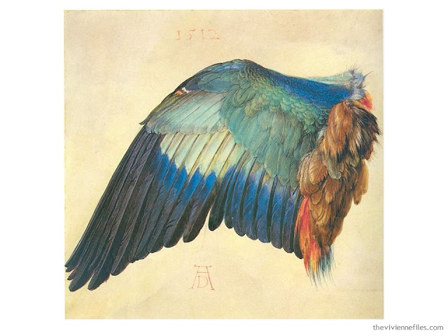 Wing of a European Roller by Albrecht Durer