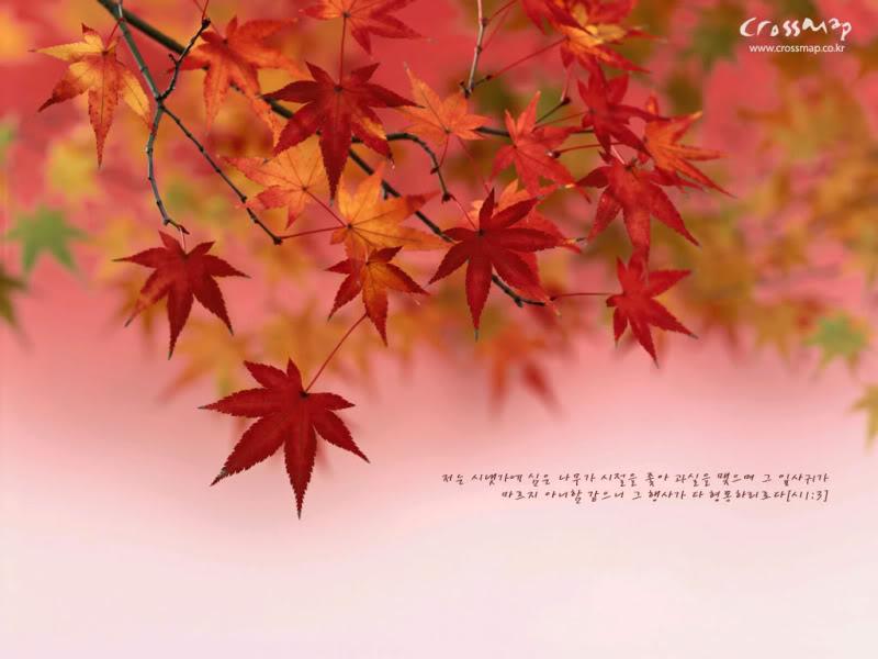 Beautiful Fall Wallpaper For Mobile Christmas Cards 2012 Inspirational Bible Verse Desktop