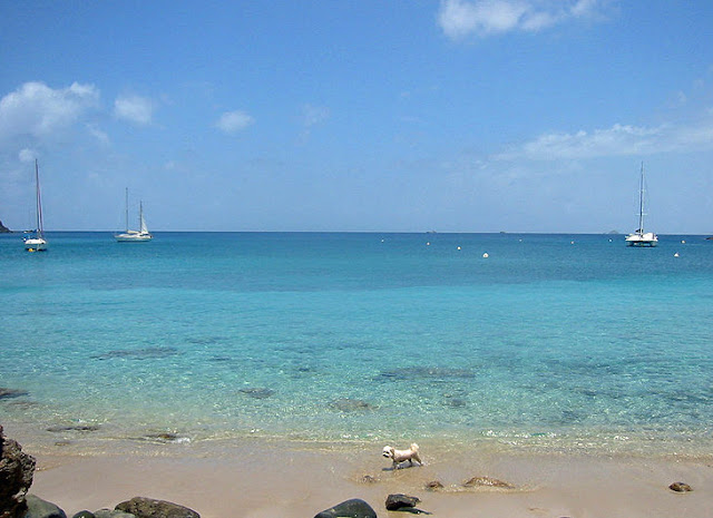 Colombier Beach,St. Barts