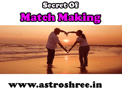 love guru/love astrologer for best life partner and match making