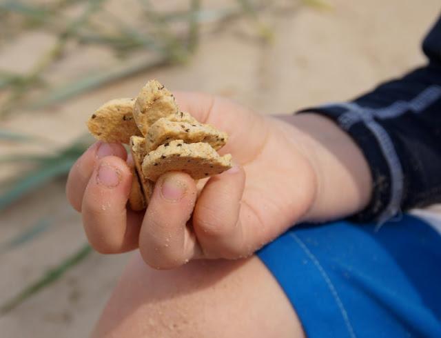 So macht Lernen Spaß: Ein Picknick mit Zahlenkeksen am Strand. Unsere Kinder essen gerne viele Kekse, besonders wenn sie lecker und bio sind.