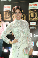 Poonam Kaur in Beautiful Floor Length Gown at IIFA Utsavam Awards 2017  Day 2  Exclusive 22.JPG