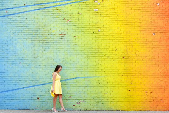 rainbow wall brooklyn, Soprano Bow Skater Dress
