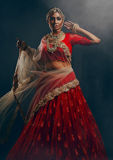 Red Designer Saree Choli by Ashutosh Choubisa (2).png
