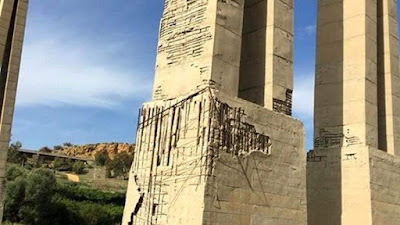"""Il ponte - lungo 1.182 metri e alto 45 metri - era stato costruito con una struttura mista: cemento armato precompresso per l'impalcato e cemento armato ordinario per le torri e le pile. L'inaugurazione era avvenuta il 4 settembre 1967 alla presenza del Presidente della Repubblica Giuseppe Saragat, facendo discutere fin da subito gli ingegneri,   che ne avevano presto individuato le nefaste criticità.  """"Una somma di errori progettuali""""  """"Il crollo di un ponte - sottolineava Brencich – è la somma una lunga serie di errori, progettuali, di manutenzione e di chi eventualmente ha autorizzato il transito di mezzi pesanti"""