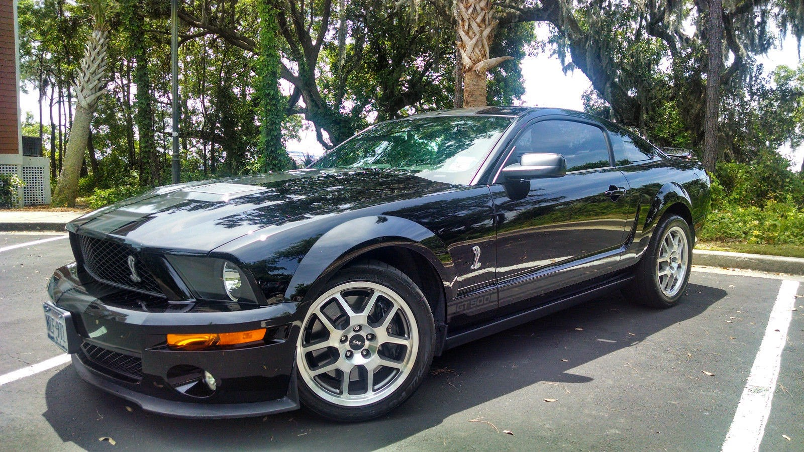 2008 ford mustang shelby gt500 5 4l supercharged for sale american muscle cars