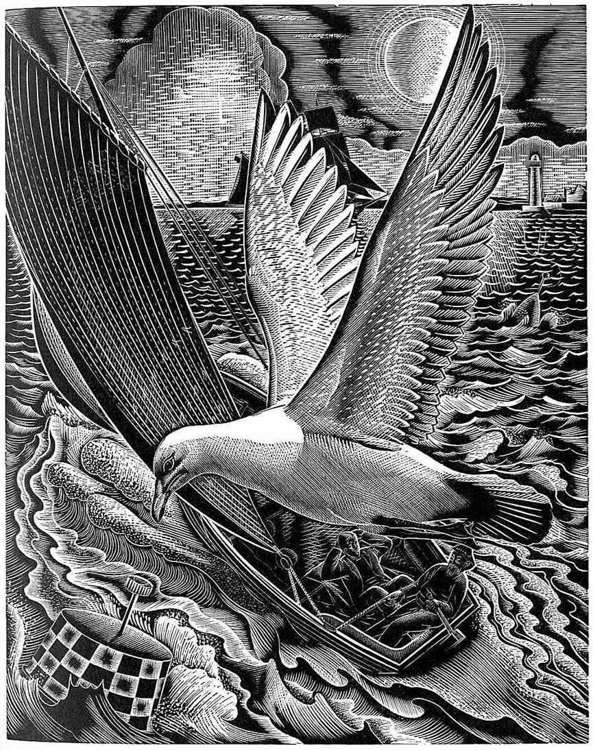 a 1950 Lennox Paterson scratchboard or scraperboard illustration of sailboat and gull, birdseye view