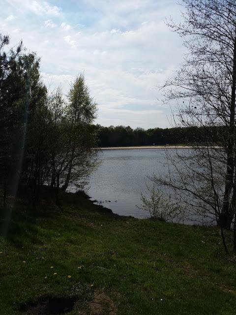 20170430 160224 - Wandelen op het Rutbeek