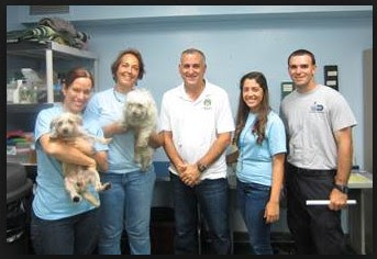 Dade County Animal Services
