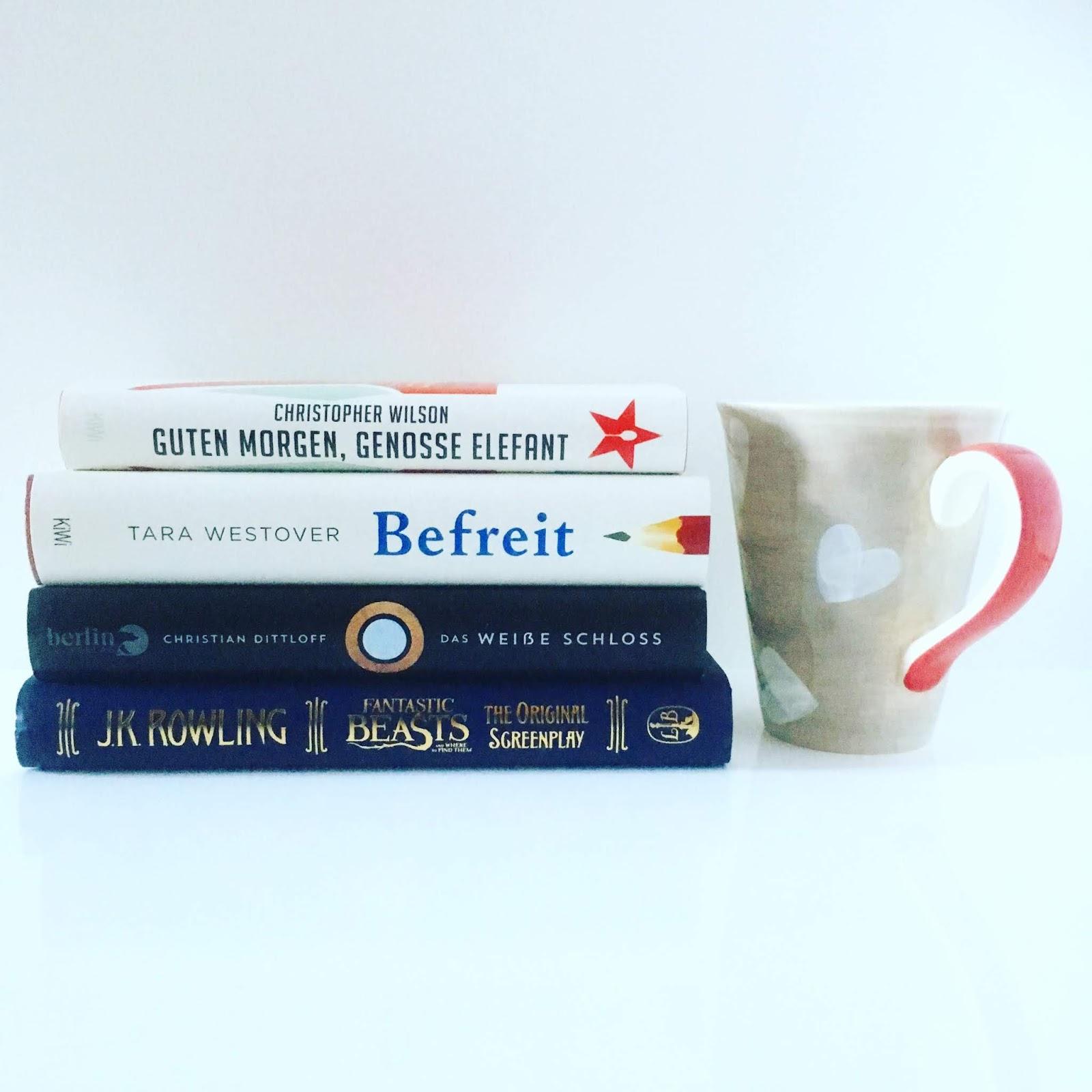 Leselust Bücher Lesemonat November