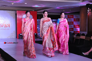 South Indian Celebrities Pos at Love For Handloom Collection Fashion Show  0141.jpg