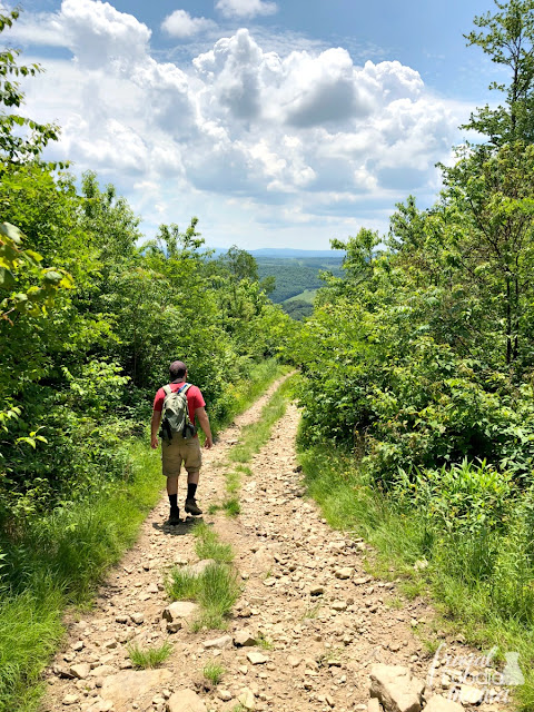 The best way to reach the highest point in the state of Maryland (aka, Hoye-Crest) is to first begin in West Virginia. Right off of U.S. Route 219 just south of Silver Lake, you will find the trail head for Maryland High Point.