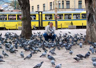 Wayne dunlap Feeding Pigeons Pigeon Square Sarajevo Bosnia