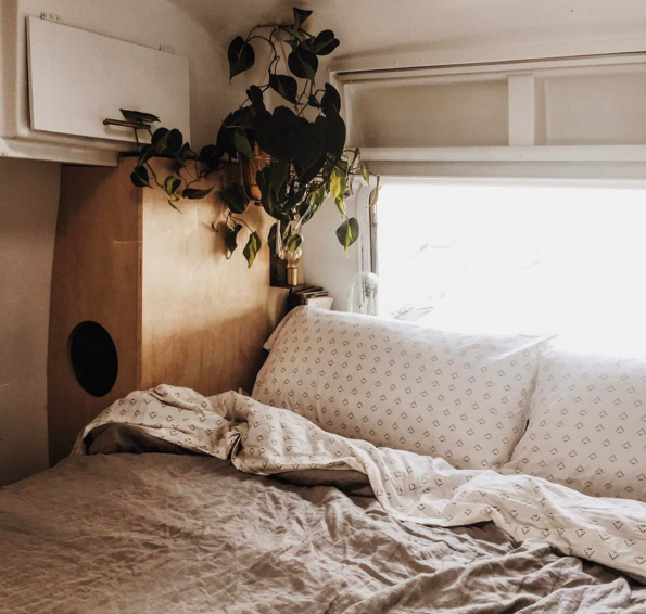cozy kind bed of a vintage airstream with a hanging plant