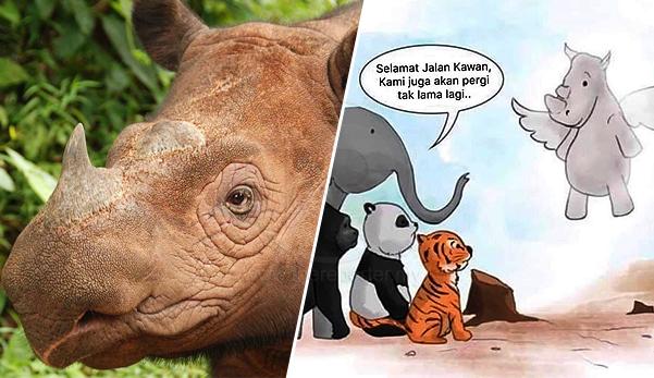 Badak Sumbu Sumatera tiada lagi dikesan di Sabah