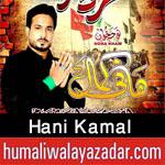 http://www.humaliwalayazadar.com/2016/10/hani-kamal-nohay-2017.html