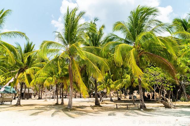 Malcapuya Island-Calamian-Coron-Philippines