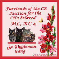 Cat Blogosphere Auction