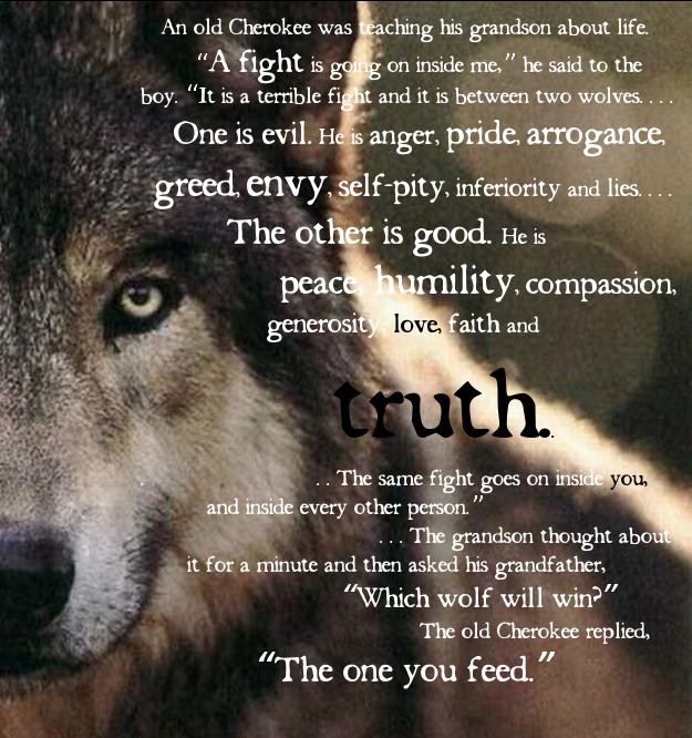 CuriCura: Sanity through infographic: Wolf wisdom.