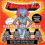 Funkadelic - Ain't That Funkin' Kinda Hard on You? (feat. Kendrick Lamar & Ice Cube) [We Ain't Neva Gonna Stop Remix] - Single Cover