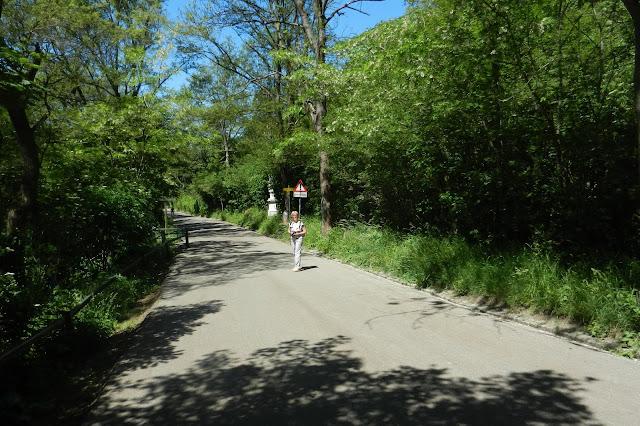 Wiedeń - zejście ze wzgórza KahlenbergWiedeń - zejście ze wzgórza Kahlenberg