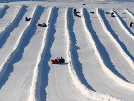Top 6 Michigan Winter Activities