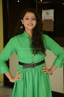 Geethanjali in Green Dress at Mixture Potlam Movie Pressmeet March 2017 061.JPG