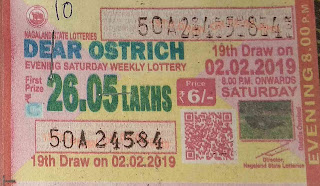 Lotterysambad, lottery sambad, lottery sambad today result, nagaland lottery sambad, sikkim state lottery, nagaland state lottery, lottery result