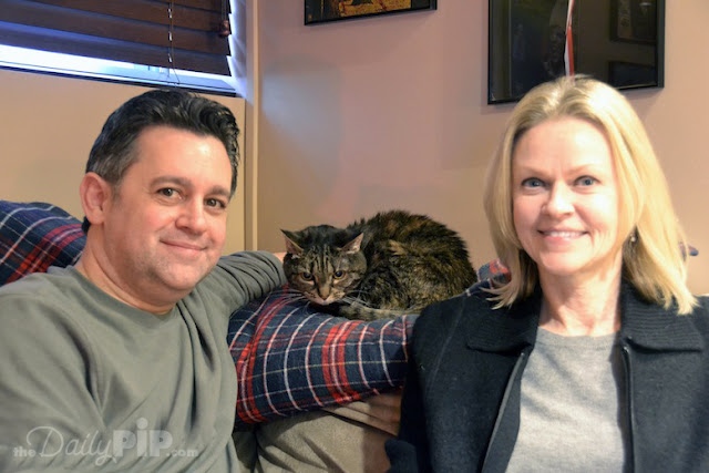 Angelina, a formerly abused cat gets adopted and a happy ending