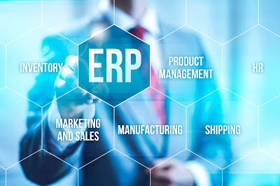Enterprise Resource Planning Software Development