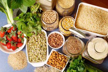 Efek Serat Makanan pada Absorpsi Nutrisi