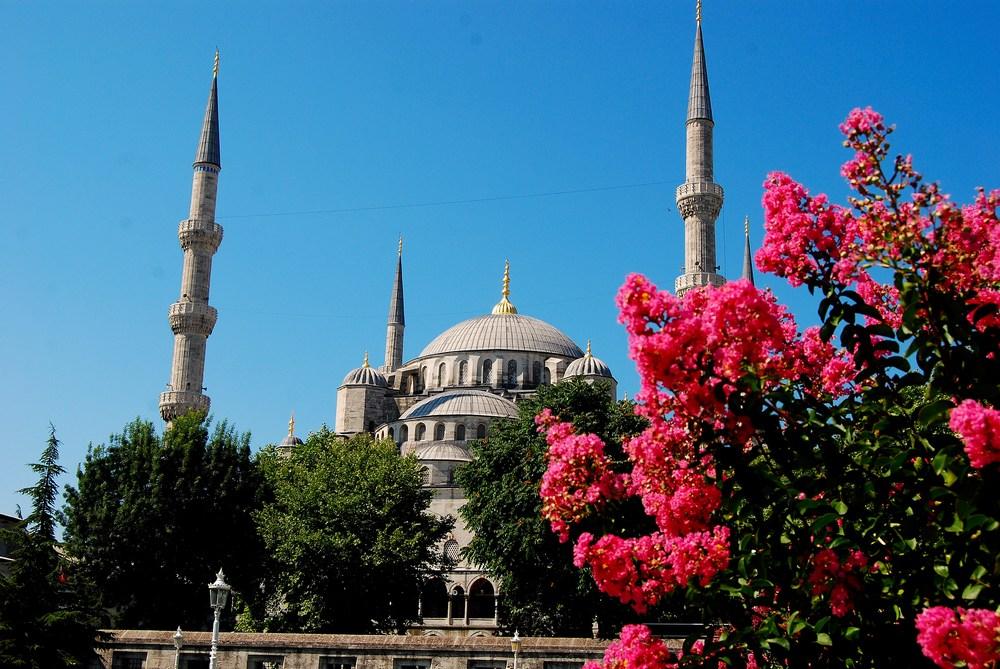 vue de la Mosquée Bleue depuis l'esplanade