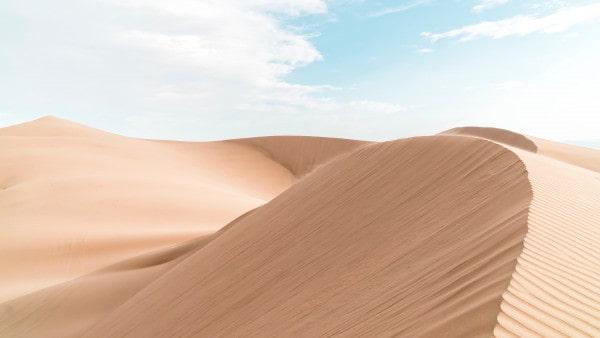 مقامات وأحوال الصوفية : الفناء والاغتراب
