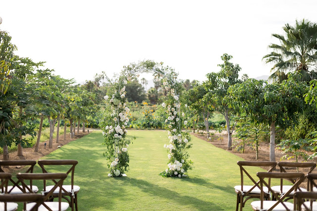 Ceremony wedding arch
