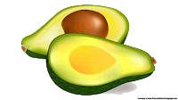 avocado fruit free clipart