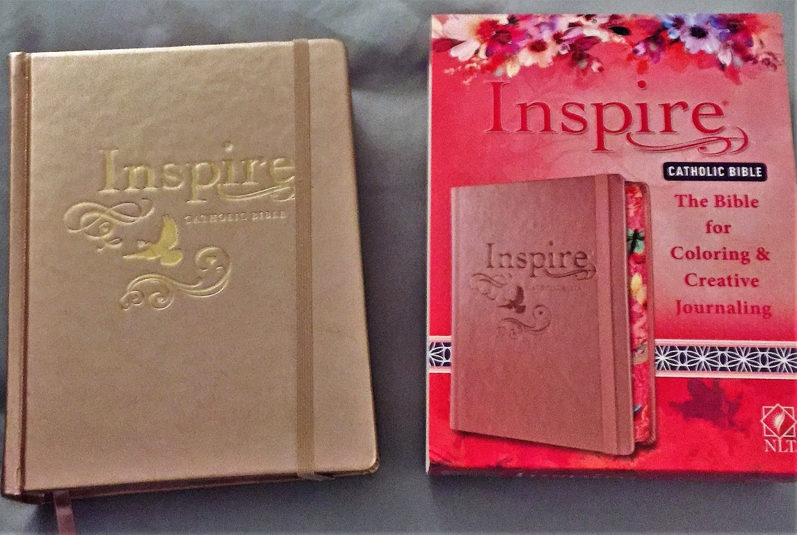 Reading With Wrin : Inspire Catholic Bible | Review | Blogmas