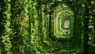 Kisah Kelam di Balik 'Terowongan Cinta'