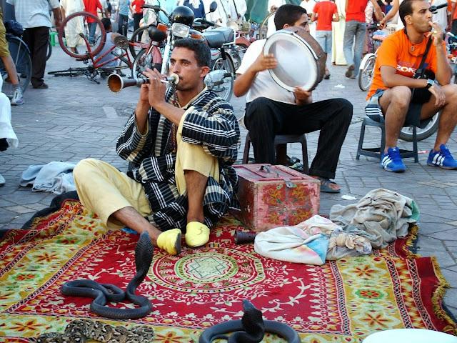 Węże na Jemaa el Fna Marrakesz