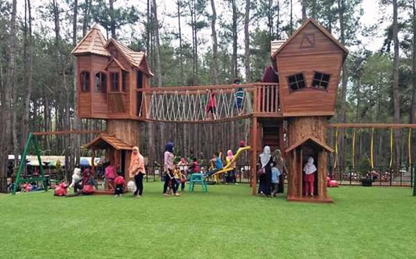 Kemit Forest Education
