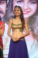 Malvika Raaj in Golden Choli and Skirt at Jayadev Pre Release Function 2017 ~  Exclusive 120.JPG